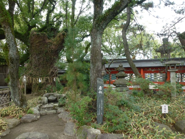 Hakozaki Shrine was also a beachhead in the 13th century Mongol invasion of Japan.